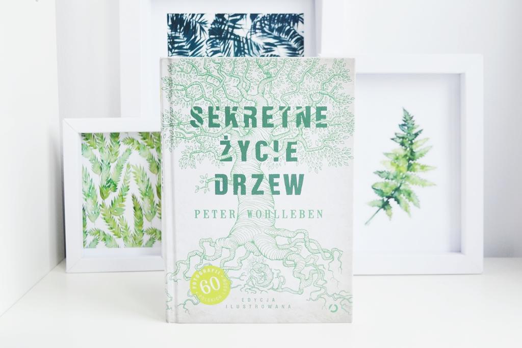 sekretne-zycie-drzew-peter-wohlleben